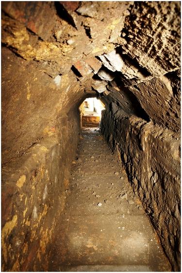 Visite thématique sur l'urbanisme et l'architecture au temps des Romains